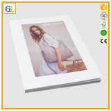 Colorful Catalogue Printing Service (OEM-GL020)
