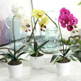 Unique Pot Orchid Artificial Flower (SF15479)