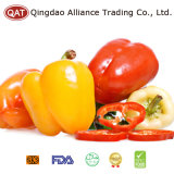 Top Quality Fresh Sweet Pepper