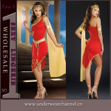 Theatrical Carnival Christmas Halloween Adult Sexy Party Dance Costume (11397)