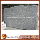 Spray White Granite Big Slabs for Tombstone/Fountain