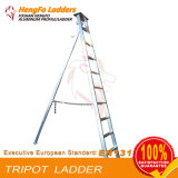 Ten Steps Aluminium Ladder Makes Agricultural Use