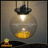 Graceful New Design Clear Glass Projection Light (Kam0327)