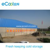 Large Size Low Temperature Fresh Keeping Cold Room for Vegetables and Fruits Distribution Center