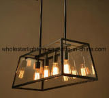 Traditional Metal Chandelier with Glass Shade (WHG-653)