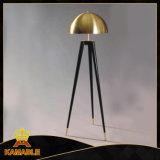 Modern Design Metal Black Gold Floor Lamp (KAF6102)