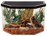 High Quality Acrylic Terrarium Reptile Box with SGS Certificates