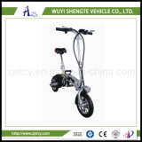 12inch Folding Electric Chopper Dirt E-Bike