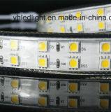 High Lumen LED Strip Light with ETL Certificate Approved 5050