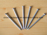 High Quality Polished Common Nail/ Common Wire Nails
