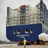 Sea Forwarder for Shipment to Dallas, Tx, America