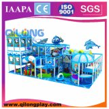 Specific Design & Interesting Children Indoor Playground Equipment (QL-3098D)