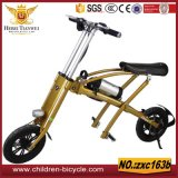 Electric Bicycle Manufacturer Portable Folding Electric Bicycle / Folding Electric Bike