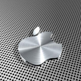 Stainless Perforated Steel Sheet/ Ss Perforated Panel (XM-05)
