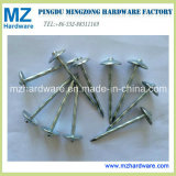 9g*2.5′′ Umbrella Roofing Nail Twist Shank with 8pkt in Carton