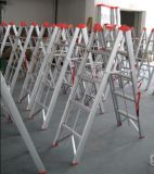 Folding Ladders / Stairs (WG608-5)