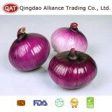 Top Quality Peeled Purple Onion