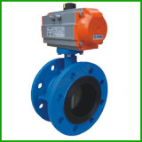 Flange Pneumatic Actuator Casting Iron/Ductile Iron /Wcb/Ss304/Ss316/DIN /ASME/ANSI Butterfly Valve