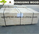 Good Poplar LVL with Any Sizes Board in China Factory