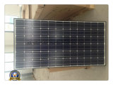 30W 6m Solar Street Light with LED/Sodium Light Source