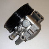 Power Steering Pumps (7613 955 127)