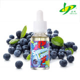 Pinyan Supply ODM OEM Service Blueberry Flavour Electronic Cigarette Liquid