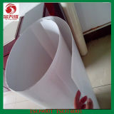 0.5mm PVC Sheet (white and clear)