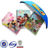 2015 Cute Wholesale 3D Notebook and Diary