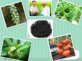 Agrochemical Organic Compound N-P-K Fertilizer 60-70% Potassium Humate