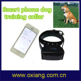 Factory Price Wholesale Wooden Pet Fence Wireless Remote Vibrator Smart Phone Yellow Leather Dog Training Collar Wt717 (OX-D1)