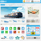 Ocean Freight /Sea Freight From China to Australia or New Zealand