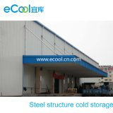 Frozen Products Steel Structure Cold Storage for Food Processing Factory and Food Storage