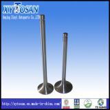 Engine Valve for Mercedes Benz Om366/ Om355/ Om422 (ALL MODELS)