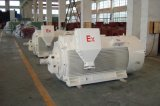 Explosion Proof (High voltage 3kv, 6kv, 10kv) Three Phase Motor