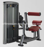 Commercial Gym Machine Back Extension Xh912