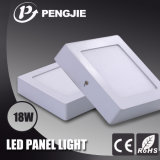 Indoor LED Light LED Panel Light with CE Ceiling Light