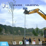 6m 36W Solar LED Street Lights with Coc Certificate