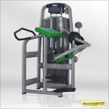 Indoor Gym Equipment Glute Body Building Machine, Bulk Fitness Equipment