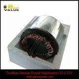 Generator Accessories 2.5kw Generator Stator (GGS-2.5ST)