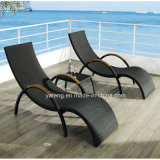 Hot Selling Double Recliner Chaise Outdoor Rattan Furniture Lounge with Teak Armrest