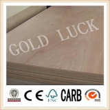 12mm Best Price White Poplar Commercial Plywood
