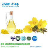 100% Natural Evening Primrose Oil with Wholesale Price CAS No.: 90028-66-3