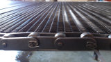 Stainless Steel Chain Conveyor Belt (Without Spacer)
