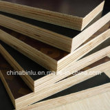 Brown or Black Film Faced Plywood for Construction From China Supplier