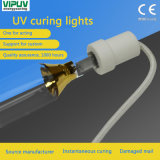 Import Ultraviolet UV Curing Glue Tubes UV Light Solid Lamp