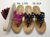 New and Fashion PVC Blowing Slipper Women Shoes