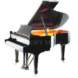 [Chloris] Ebony Polish Grand Piano Hg-231e
