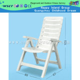 Plastic Foldable Beach Chair Leisure Chair for Sale (HD-19706)