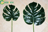 Monsteaia Leaf Artificial Leaf in Various Models and Designs