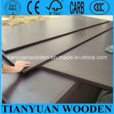 Exterior Plywood Sheets/Film Faced Shuttering Plywood 12mm